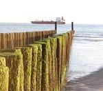 Omgeving zeeland 2